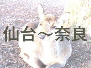 仙台から奈良までの交通・アクセス方法のまとめ