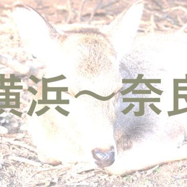 横浜から奈良までの交通手段・アクセス情報のまとめ