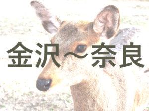 【JR】金沢から奈良までの交通・アクセス手段を解説
