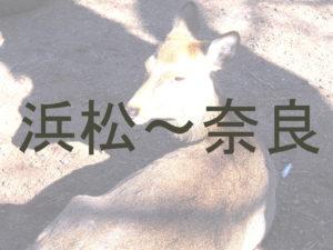 浜松から奈良までの交通アクセスのまとめ