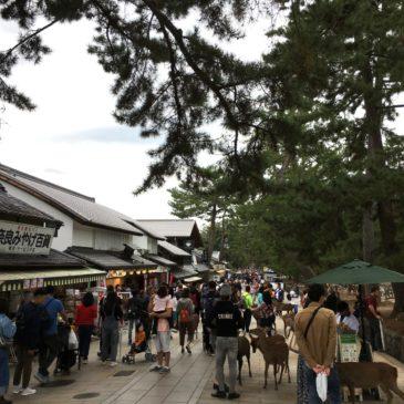 奈良「東大寺」の「混雑状況」について(時間帯別・通常時・繁忙期・お正月・お水取り開催時など)
