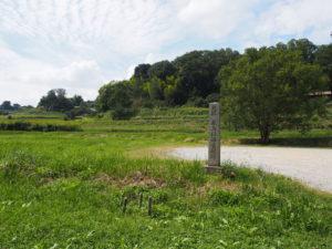 【飛鳥稲渕宮殿跡】棚田の近くにある遺跡は「飛鳥川辺行宮」とも
