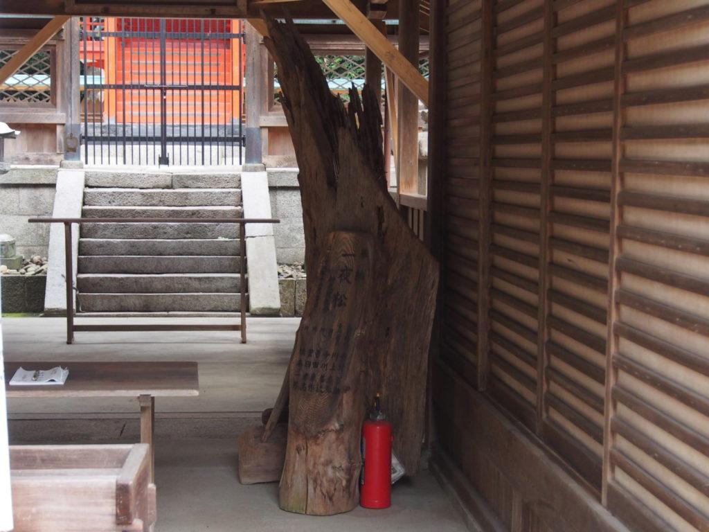 菅田神社(大和郡山市)の「一夜松」