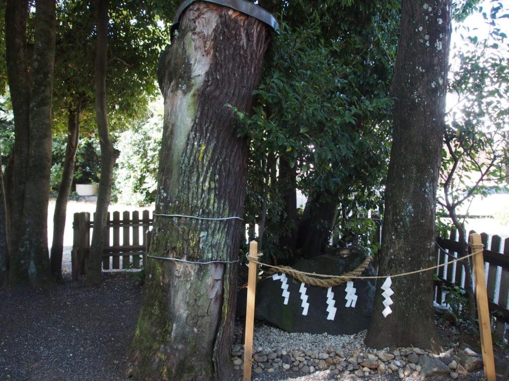 大神神社摂社「綱越神社」の「磐座」